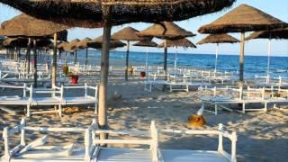 Hotel Club President 3* Тунис(Отель Hotel Club President 3* Тунис Отель типа