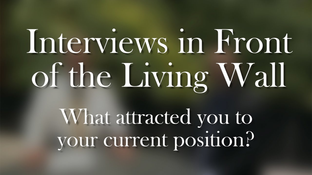 living wall interviews what attracted you to your current position