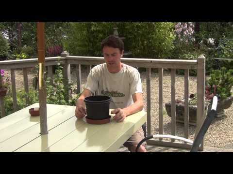 20cm Plant Pot Saucer