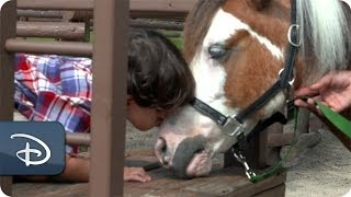 #DisneyKids: First Pony Ride | Walt Disney World