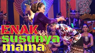 Download Video PERCIL Cs Lusi Brahman - 13 JANUARI 2019 - Sidowarek Plemahan Kediri - Guyon Maton MP3 3GP MP4