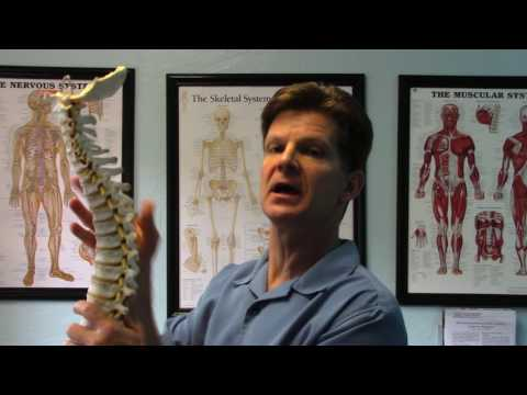 Inflammatory of the Bones, Dr. Steve Sandifer, Champion Chiropractic Center INC.
