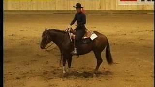 Reininghorse, fast draw enterprise 2007
