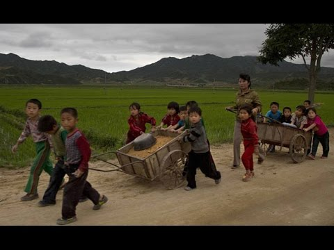 north korea latest lifestyle | (Daily Life for citizens).