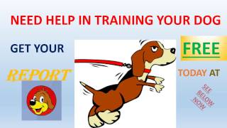 how to train a shih tzus | *** Get A Free Report***