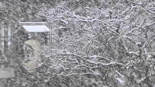 第04回 「Snow dance」