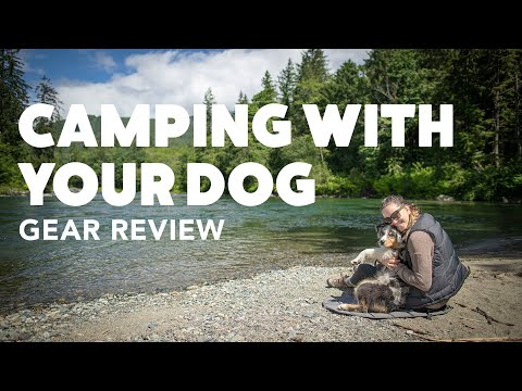 Camping With Your Dog Gear Review | Rover.com