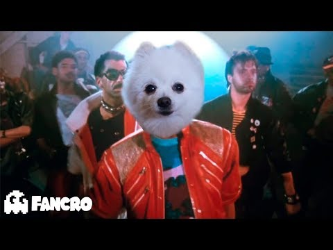 Michael Jackson - Beat It (Official Video) - Cover perros