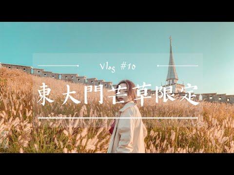 韓國VLOG #10 秋天首爾必去!黃澄澄芒草、駱山公園看日出!網美打卡聖地|二零2020