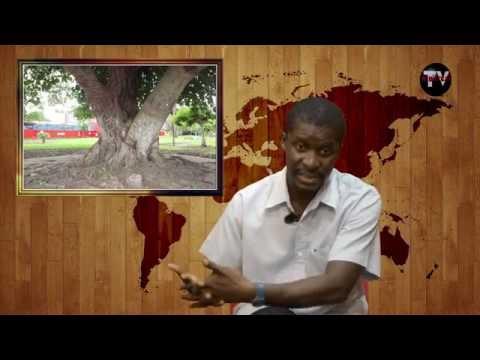 Autarca de Moçambique em visita ao Ribatejo