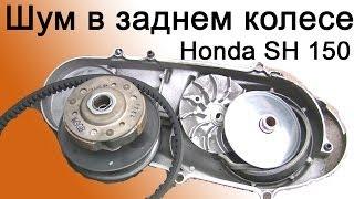 СВОИМИ РУКАМИ: Шум в заднем колесе Honda SH 150