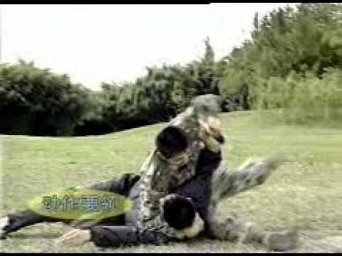 Chinese Military Combat