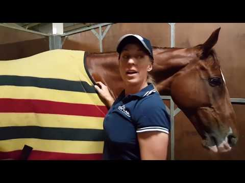 Back to the Stables with Megan Jones at 2017 Sydney International Horse Trials