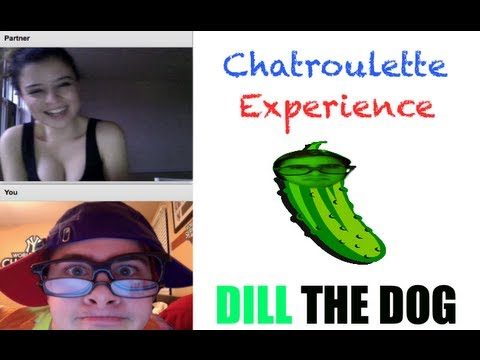 Chatroulette Experience [Dill The Dog]