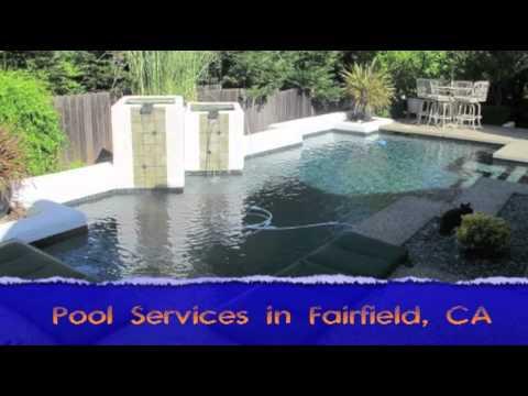 Buy Pool Cleaner in Lowellville