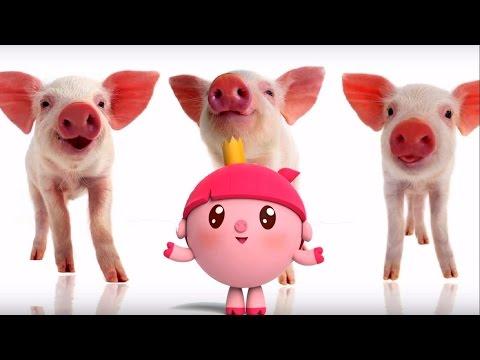 Малышарики - Обучающий мультик для малышей - Все серии подряд -  Учимся считать 1⃣2⃣3⃣4⃣5⃣