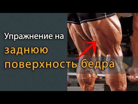 Упражнение на заднюю поверхность бедра бицепс бедра