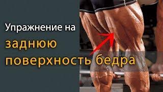 Упражнение на заднюю поверхность бедра - бицепс бедра
