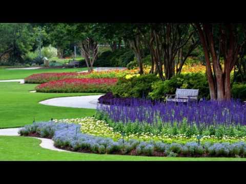 Summer at the Dallas Arboretum