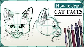 How to draw cat faces - Mink