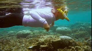 female snorkeler in uv wetsuit…