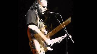 Walter Trout - So Afraid Of The Darkness