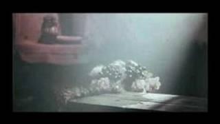 Clip of Saint Mary film