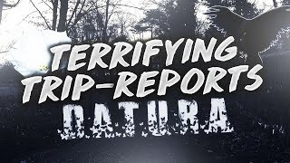 Terrifying Trip Reports #1 - Datura, 3 Days of Insanity