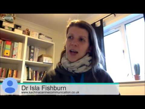 Monica Gonzalez Tovar entrevista a la Dra. Isla Fishburn (Subtítulos Castellano)