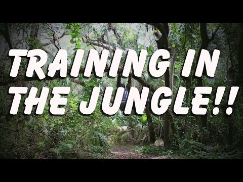 Training In The Jungle | No equipment required!