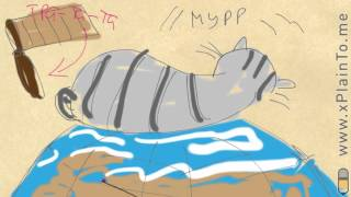 Звук кота