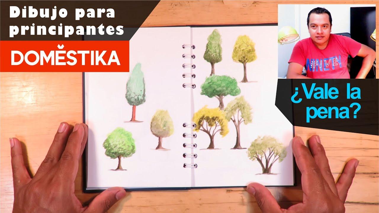 Aprendiendo con Domestika - Dibujo para principiantes Nivel -1 ¿¿Vale la pena❓❓