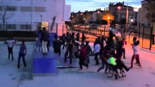 Harlem Shake- Skate Park Guzman