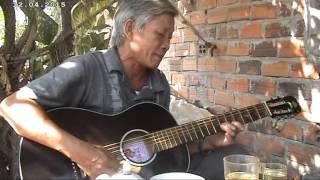 Guitar Tân cổ.  Hoa tím bằng lăng