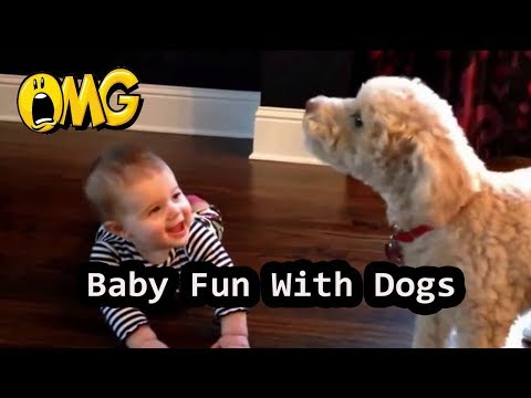 Baby Fun with Dogs | Funny Dog Videos | Funny Pets
