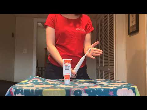 Tooth brushing & Dental Care for Toy Manchester Terrier Owners