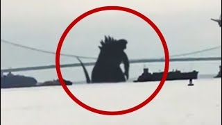 10 Giant Creatures Caught On Camera! 2017