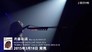 """斉藤和義 Blu-ray&DVD/CD KAZUYOSHI SAITO LIVE TOUR 2014""""RUMBLE HORSE..."""