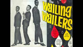 The Wailing wailers - It hurts to be alone