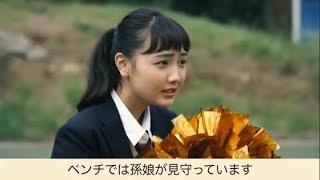 特殊詐欺スポーツシリーズ・PK編1 玉佐 廉造(だまさ れんぞう)と「家族の絆」