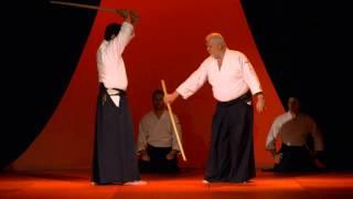 NAMT 2014 - Démonstration d'aikido avec André Cognard