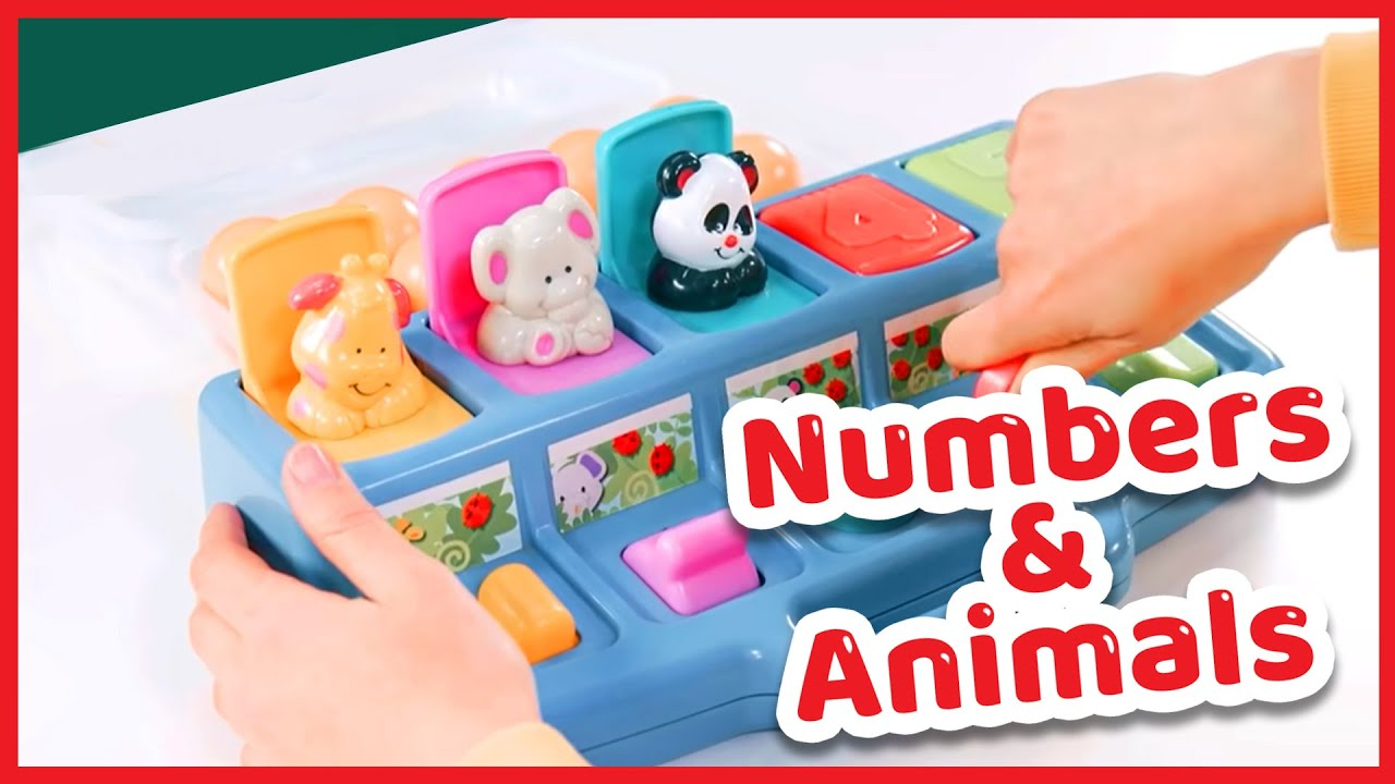 Numbers and Animals The big box of fun  - Superkids