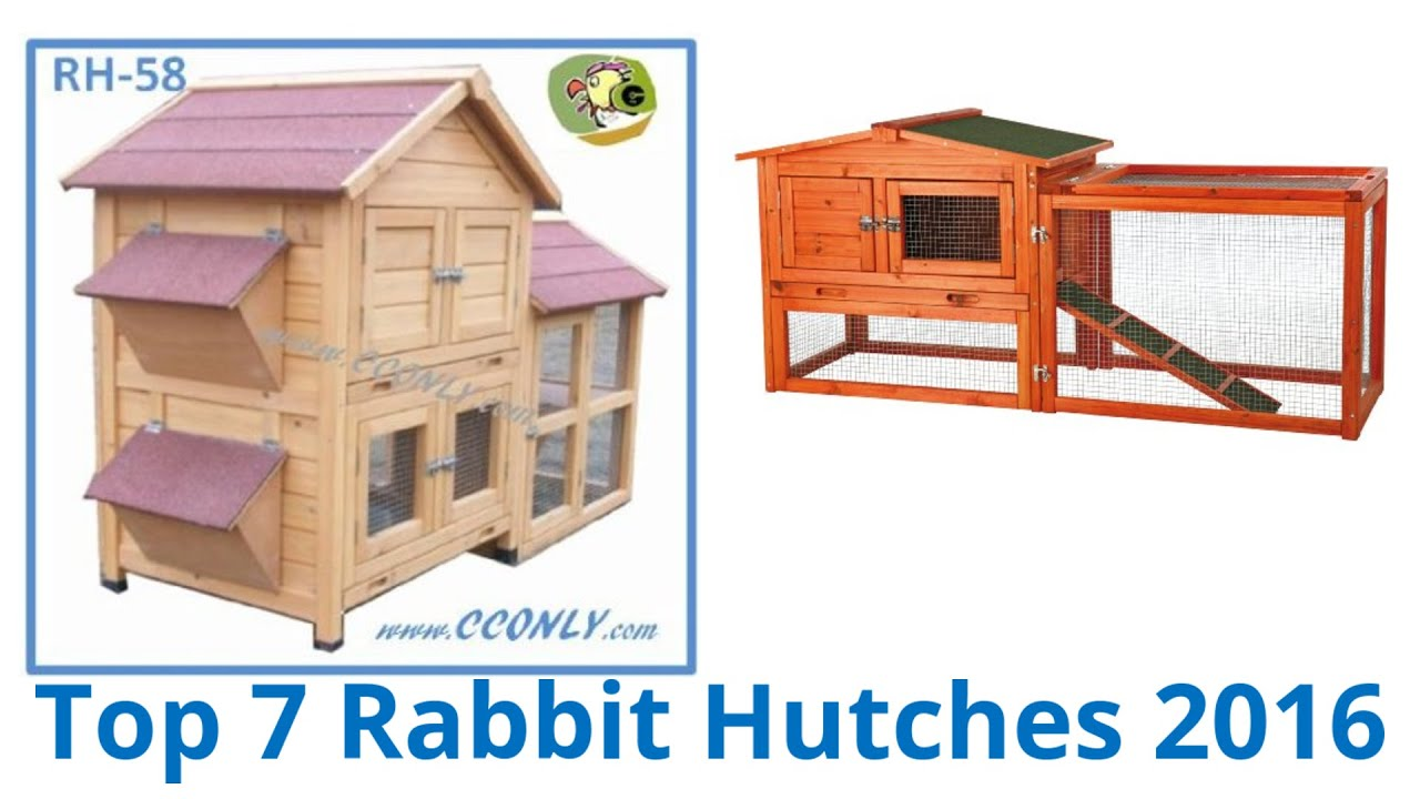 holly follies hutches finishing hutch day with a done new the rabbit