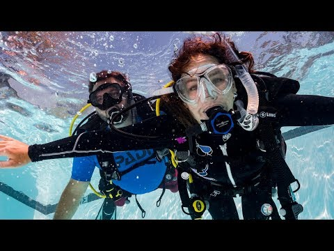 Preview PADI Courses | PADI Adaptive Support Diver