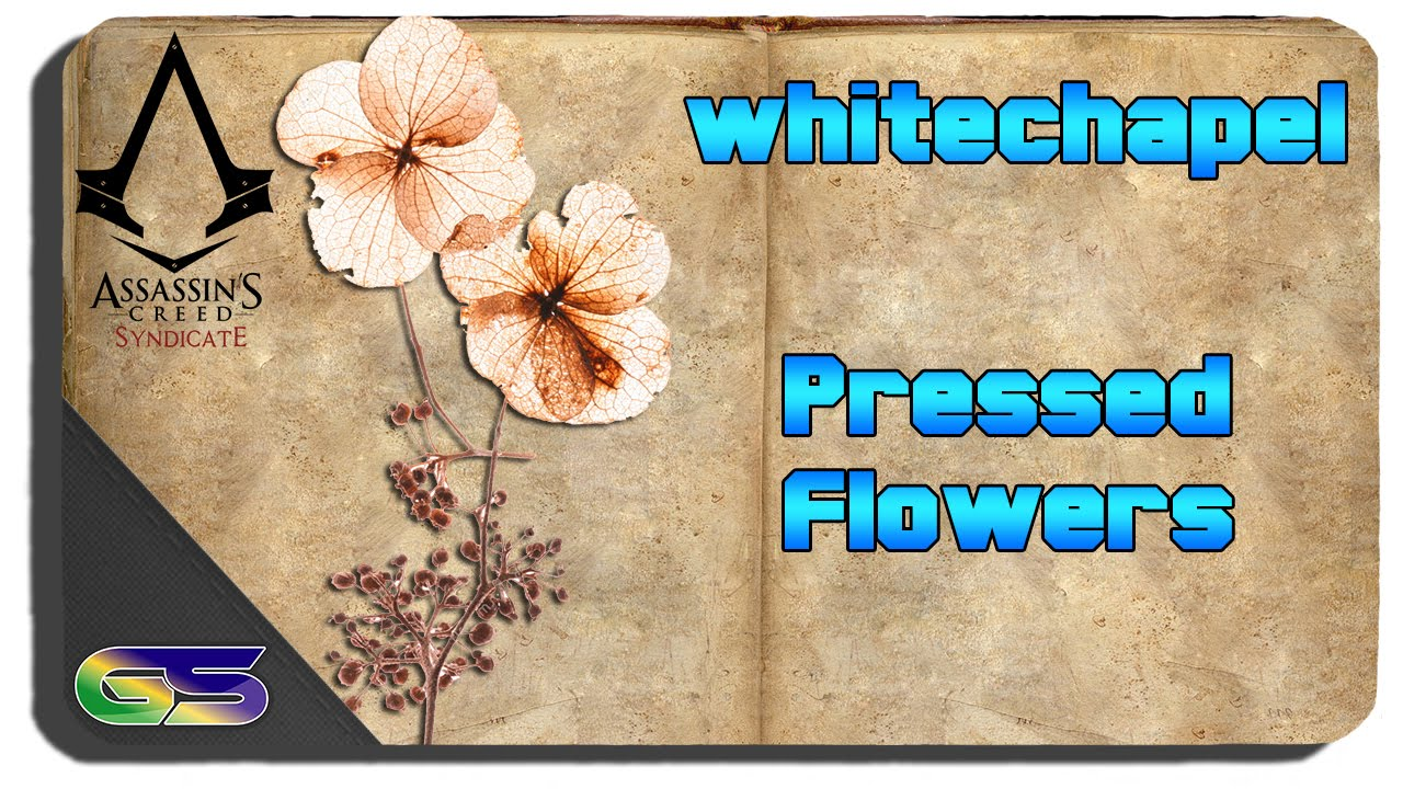 Assassins Creed Syndicate White Chapel All Pressed Flowers