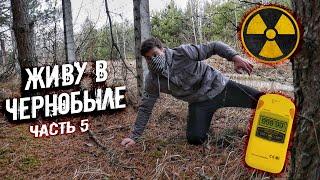 Download Кто живет на границе Зоны Отчуждения? Нашел тайник в заброшенном доме в Чернобыле спустя 34 года Mp3 and Videos