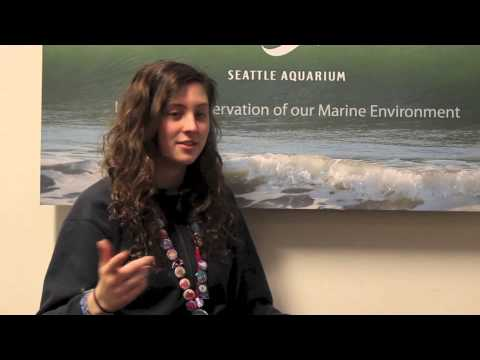 Creativity Inspiring Conservation: The Effects of Climate Change on the Ocean