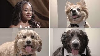 Dogs Try to Score Their Owners a Date!