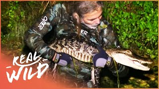 The Abandoned Mine Filled With Alligators (Wildlife Documentary) | Savage Wild | Real Wild