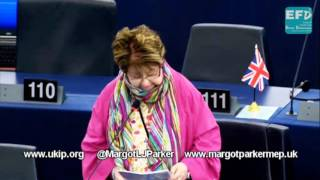 Harmonisation of EU standards puts UK product quality at risk   Margot Parker MEP